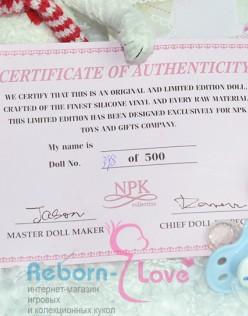 Свидетельство, сертификат (арт. #000)